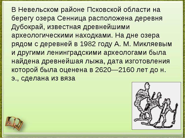 В Невельском районе Псковской области на берегу озера Сенница расположена дер...