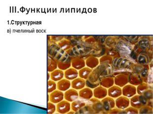 1.Структурная в) пчелиный воск