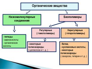 Органические вещества Низкомолекулярные соединения Биополимеры Нерегулярные (