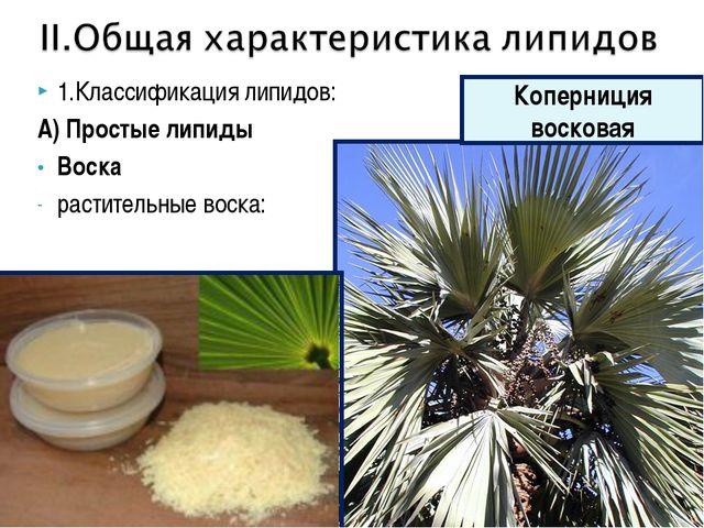 1.Классификация липидов: А) Простые липиды Воска растительные воска: Коперниц...