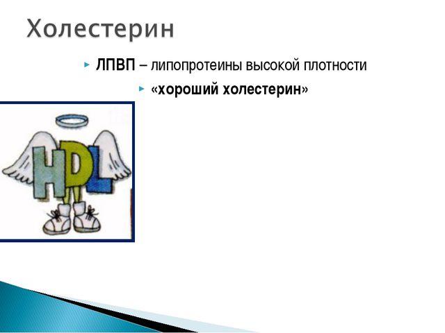 ЛПВП – липопротеины высокой плотности «хороший холестерин»