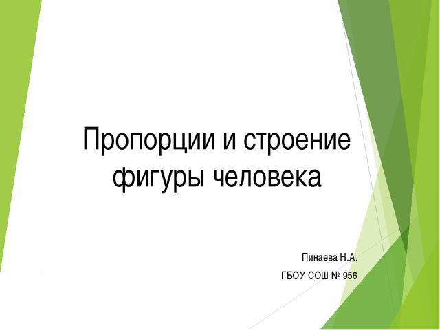 Пропорции и строение фигуры человека Пинаева Н.А. ГБОУ СОШ № 956