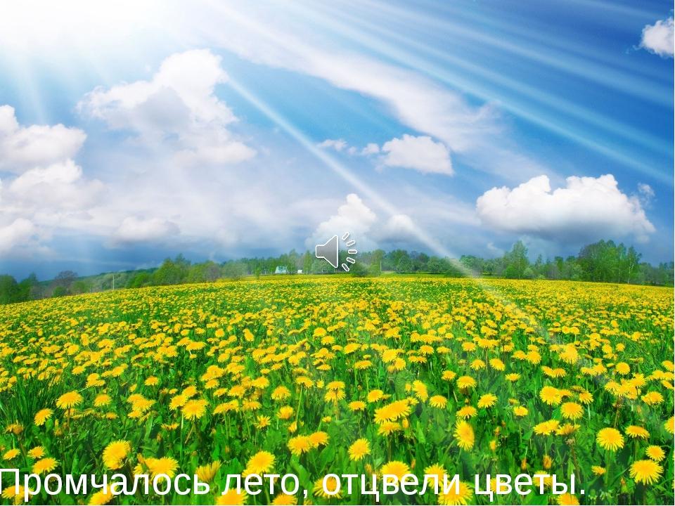 Промчалось лето, отцвели цветы.