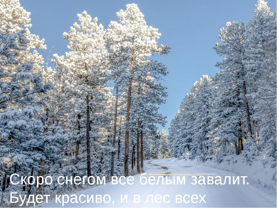 Скоро снегом все белым завалит. Будет красиво, и в лес всех поманит.