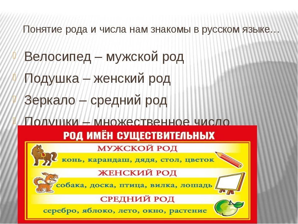 Понятие рода и числа нам знакомы в русском языке… Велосипед – мужской род Под...