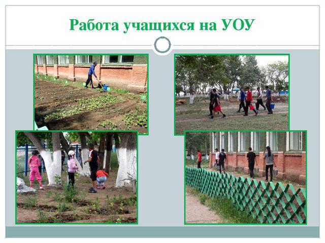 Работа учащихся на УОУ