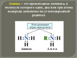 Амины – это производные аммиака, в молекуле которого один, два или три атома