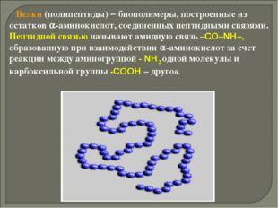 Белки (полипептиды)  биополимеры, построенные из остатков -аминокислот, со