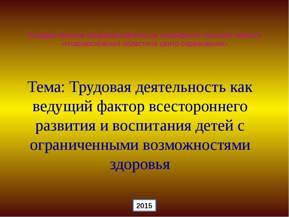 Государственное общебразовательное учреждение Тульской области «Новомосковски...