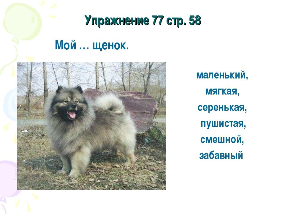 Упражнение 77 стр. 58 Мой … щенок. маленький, мягкая, серенькая, пушистая, см...