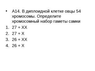 А14. В диплоидной клетке овцы 54 хромосомы. Определите хромосомный набор гаме