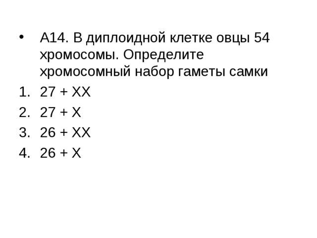 А14. В диплоидной клетке овцы 54 хромосомы. Определите хромосомный набор гаме...