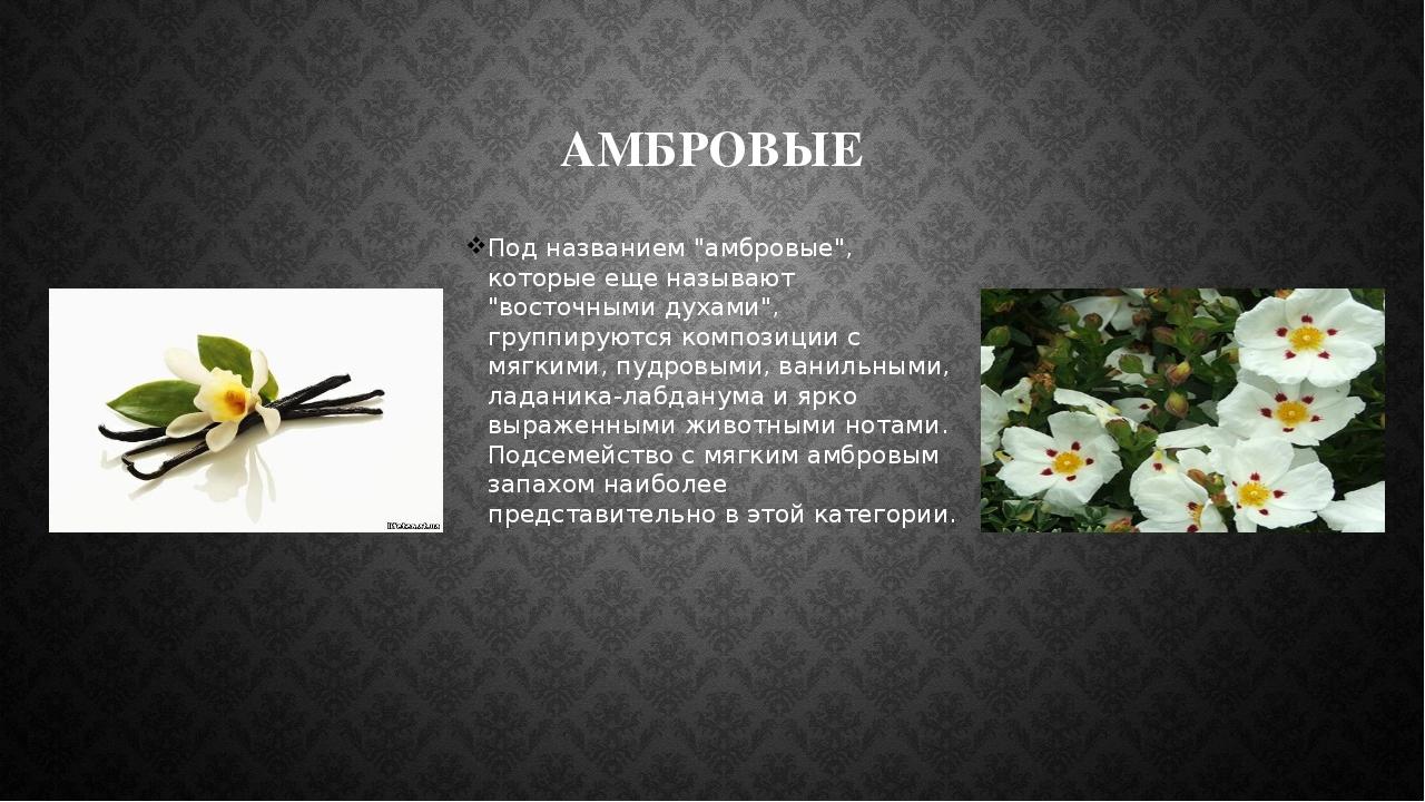 """АМБРОВЫЕ Под названием """"амбровые"""", которые еще называют """"восточными духами"""",..."""