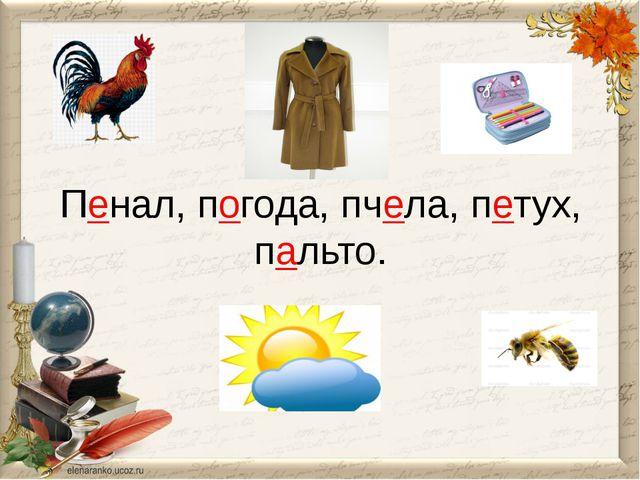 Пенал, погода, пчела, петух, пальто.