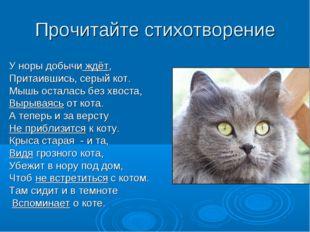 У норы добычи ждёт, Притаившись, серый кот. Мышь осталась без хвоста, Вырывая
