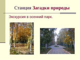 Станция Загадки природы Экскурсия в осенний парк.