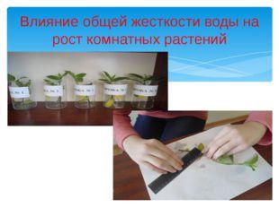 Влияние общей жесткости воды на рост комнатных растений
