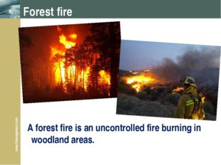 Forest fire A forest fire is an uncontrolled fire burning in woodland areas.