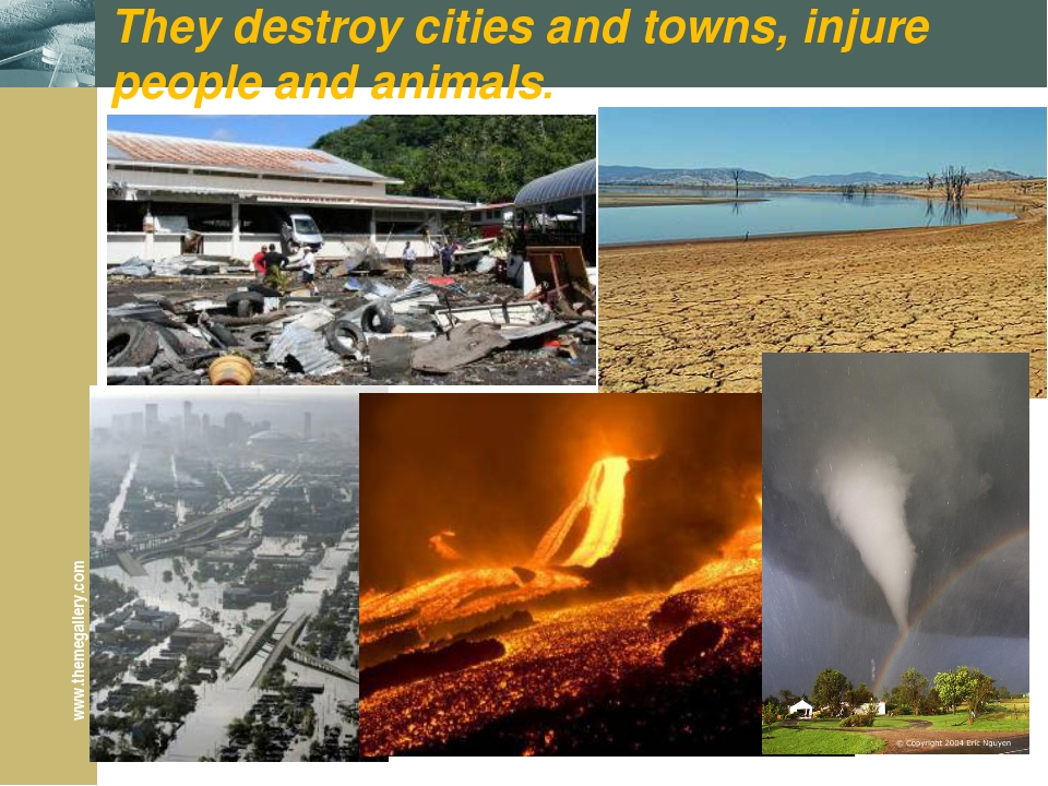 They destroy cities and towns, injure people and animals. www.themegallery.com