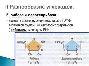 б) рибоза и дезоксирибоза – входят в состав нуклеиновых кислот и АТФ, витамин