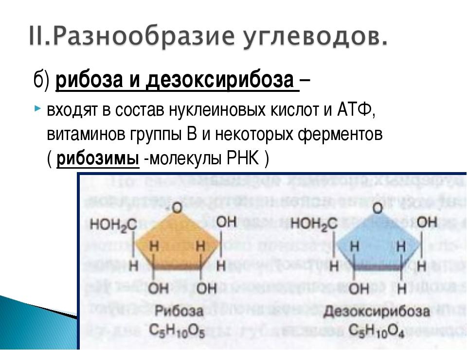 б) рибоза и дезоксирибоза – входят в состав нуклеиновых кислот и АТФ, витамин...