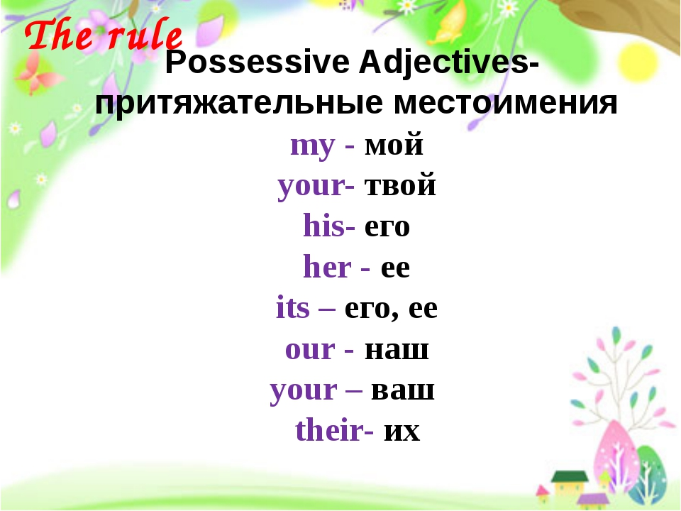 Possessive Adjectives- притяжательные местоимения my - мой your- твой his- ег...