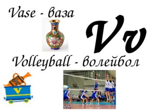 Vv Volleyball - волейбол Vase - ваза