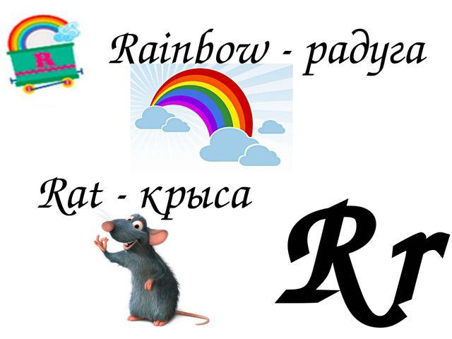 Rr Rat - крыса Rainbow - радуга