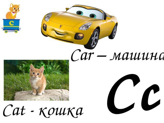 Cc Cat - кошка Car – машина