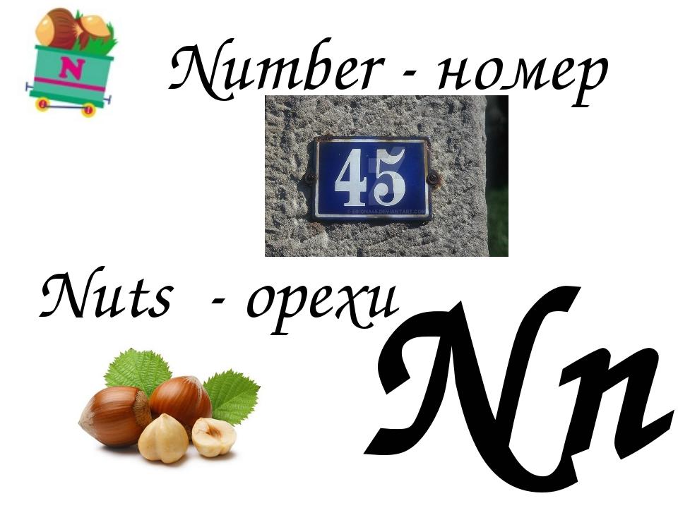 Nn Nuts - орехи Number - номер