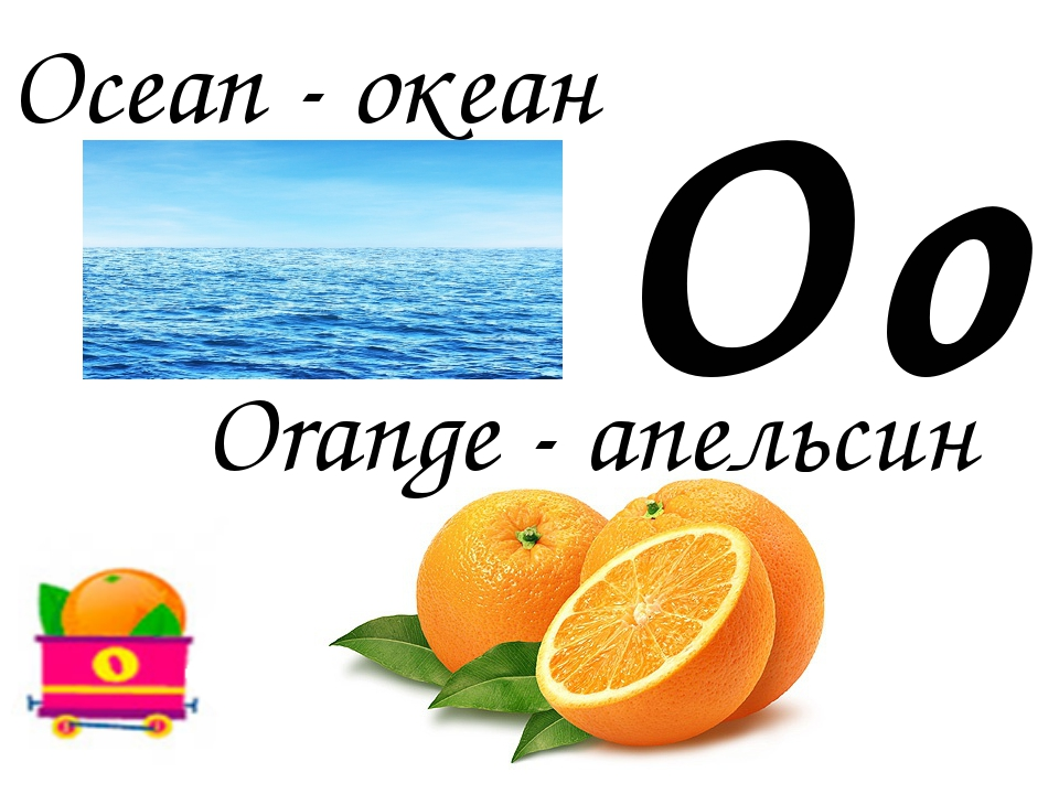 Oo Orange - апельсин Ocean - океан