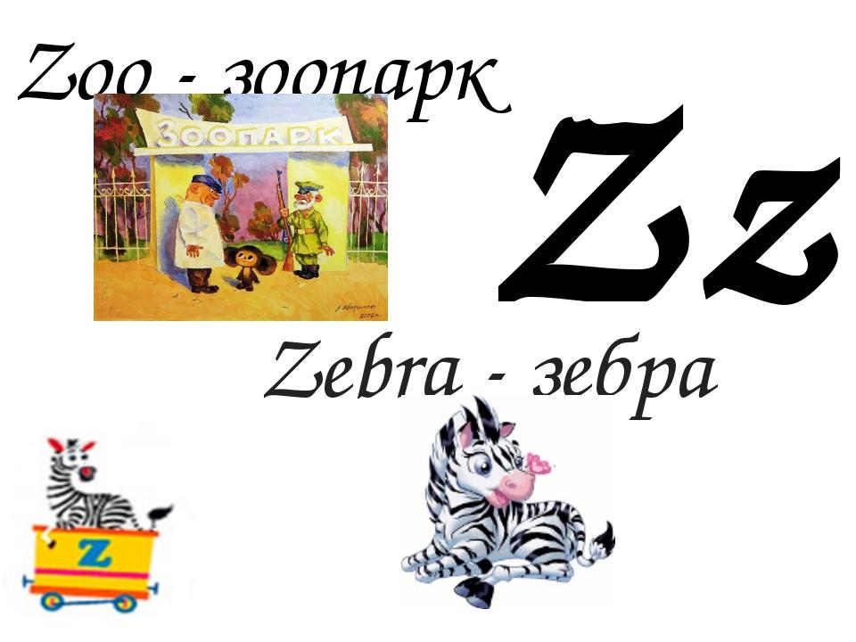 Zz Zoo - зоопарк Zebra - зебра