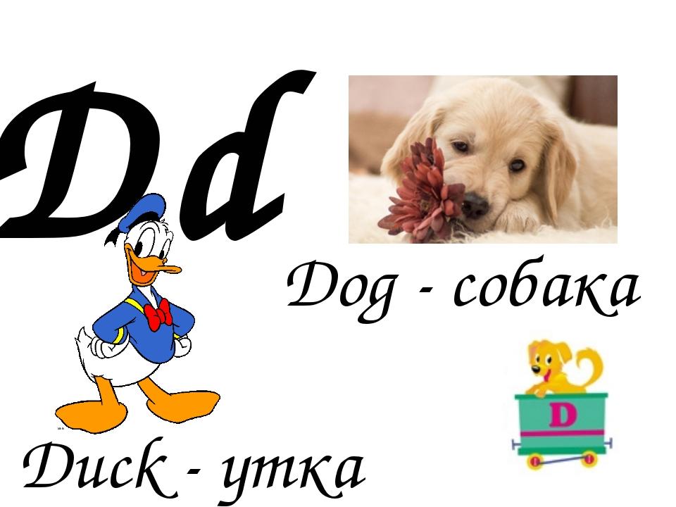 Dd Duck - утка Dog - собака