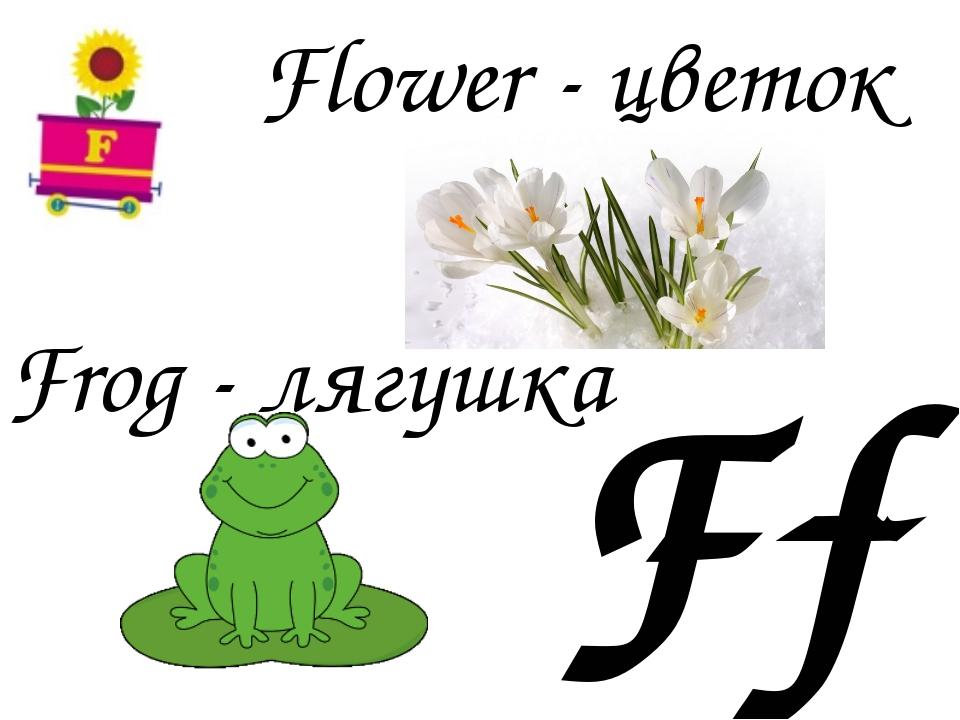 Ff Frog - лягушка Flower - цветок