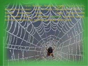 Пауки́ (лат.Araneae, Aranei)— отряд членистоногих, который насчитывает око
