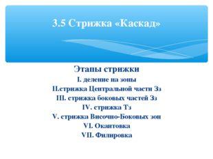 Этапы стрижки I. деление на зоны II.стрижка Центральной части Зз III. стрижка