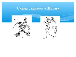 Схема стрижки «Шарм»