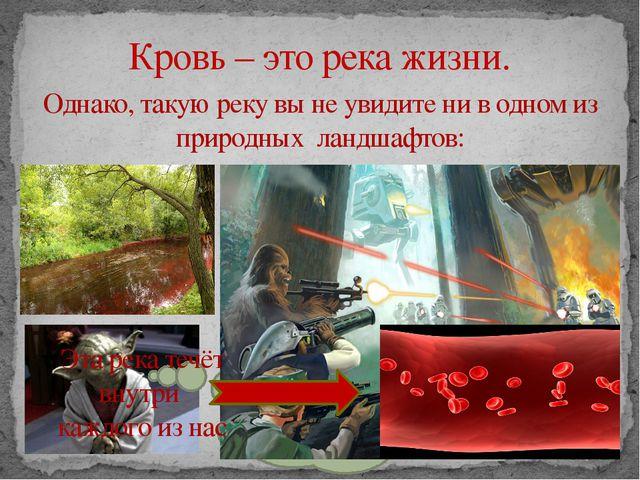 Кровь – это река жизни. Однако, такую реку вы не увидите ни в одном из приро...