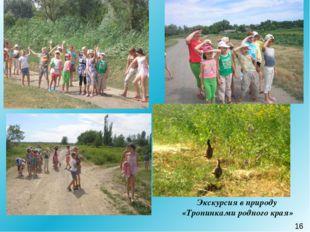 Экскурсия в природу «Тропинками родного края» 16