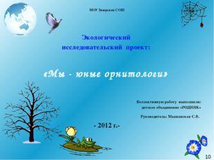 МОУ Зазерская СОШ  Экологический исследовательский проект: «Мы - юные орнит