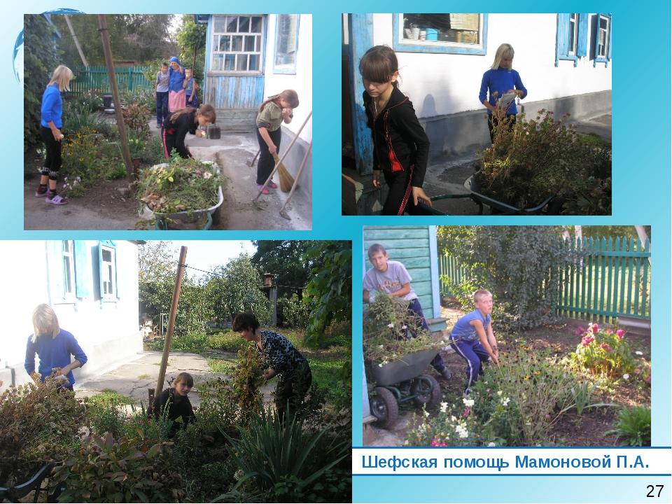 Шефская помощь Мамоновой П.А. 27