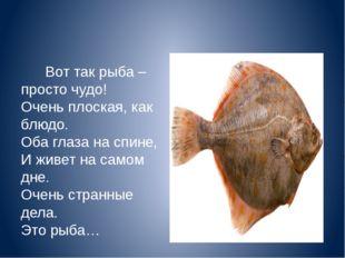 Вот так рыба – просто чудо! Очень плоская, как блюдо. Оба глаза на спине, И