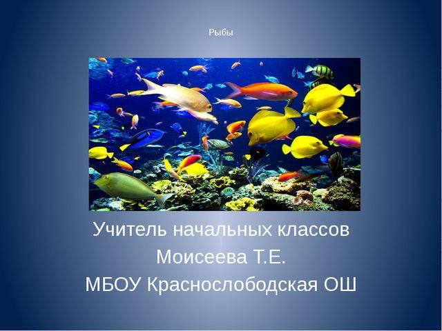 Рыбы Учитель начальных классов Моисеева Т.Е. МБОУ Краснослободская ОШ
