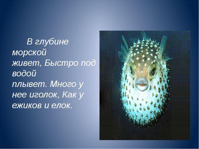 В глубине морской живет,Быстро под водой плывет.Много у нее иголок,Как у...