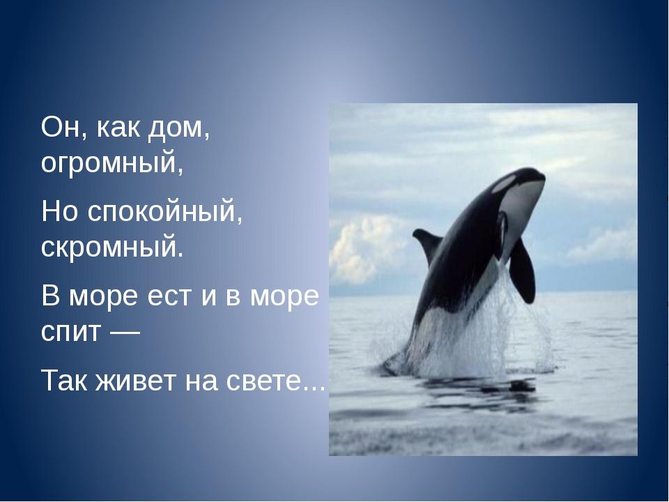 Он, как дом, огромный, Но спокойный, скромный. В море ест и в море спит — Та...