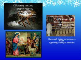 Маленький Иисус был положен в ЯСЛИ, куда кладут корм для животных