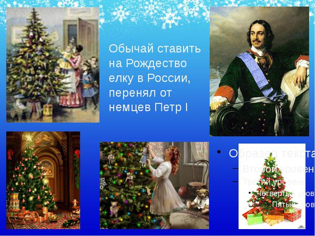 Обычай ставить на Рождество елку в России, перенял от немцев Петр I