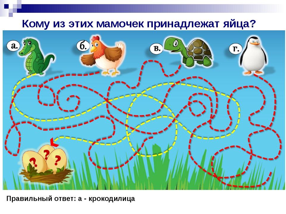 Кому из этих мамочек принадлежат яйца? Правильный ответ: а - крокодилица