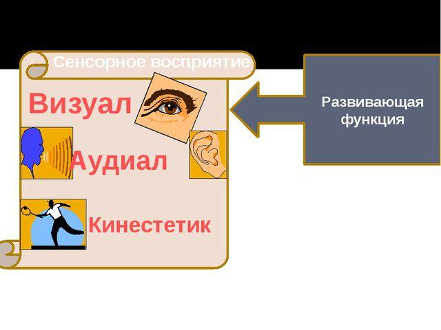 Развивающая функция Сенсорное восприятие Визуал Аудиал Кинестетик