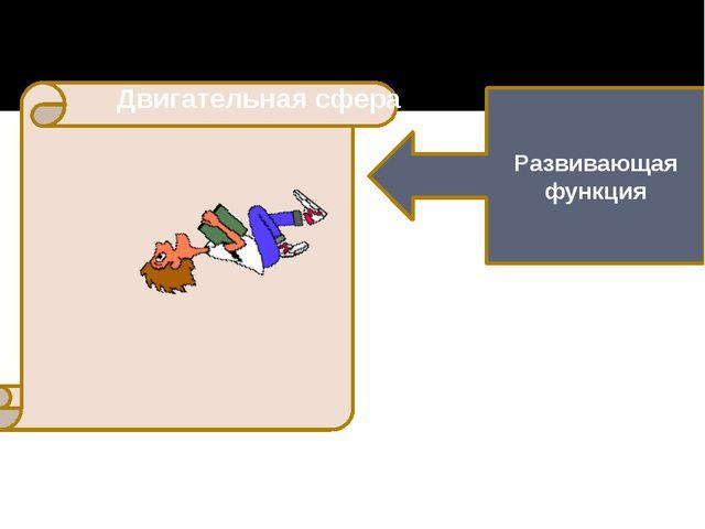 Развивающая функция Двигательная сфера